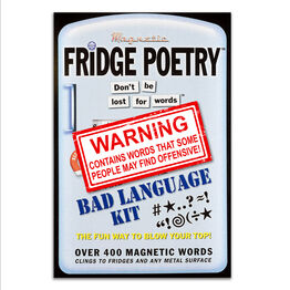 Magnetic Poetry For Your Fridge, Whiteboards, Home and Office - Bad Language